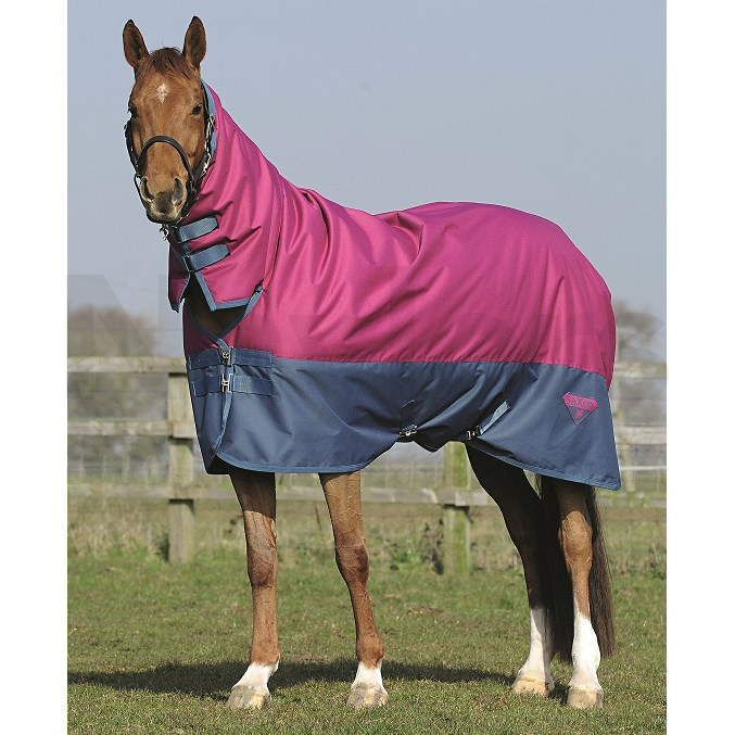 Saxon 600 Combo Heavyweight Turnout Rug