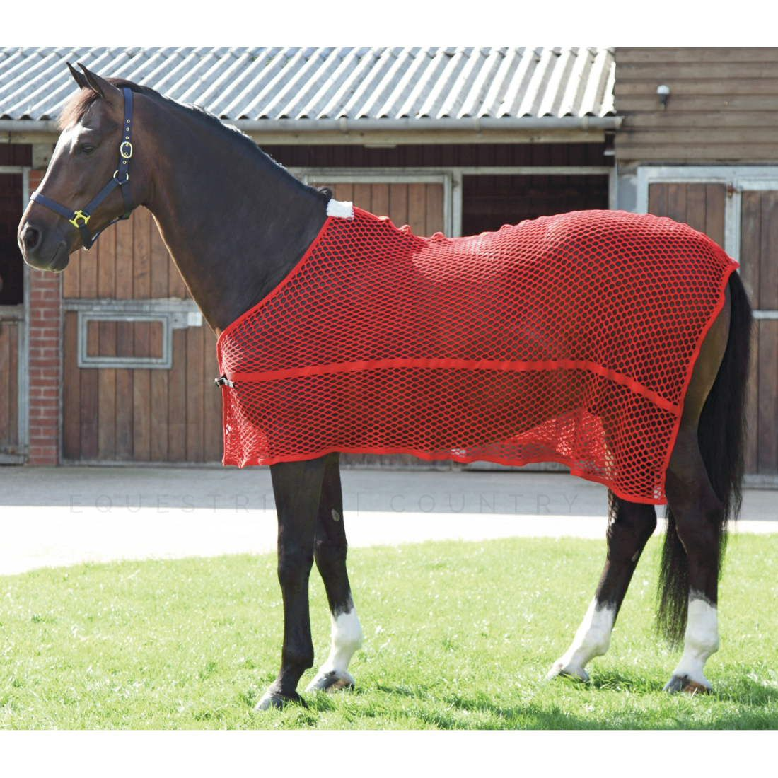 Shires Lambourne Anti Sweat Rug Red