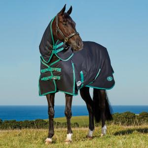 WeatherBeeta Green-Tec 900D 220g Medium Weight Detach-A-Neck Turnout Rug Black/Bottle Green