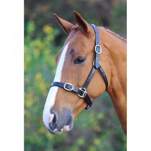Blenheim Fully Adjustable Leather Headcollar Black