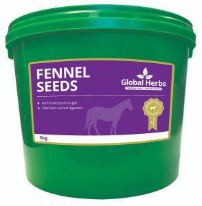 Global Herbs Fennel Seeds