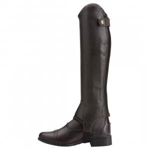 Ariat® Concord Half Chaps Smooth Chocolate