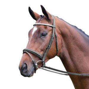 Aviemore Diamante Flash Bridle Black
