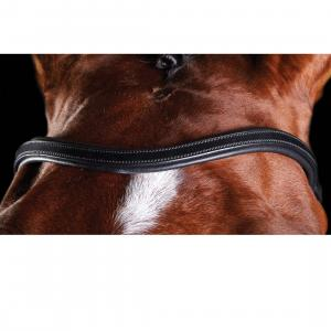 Collegiate ComFiTec Training Bridle Black