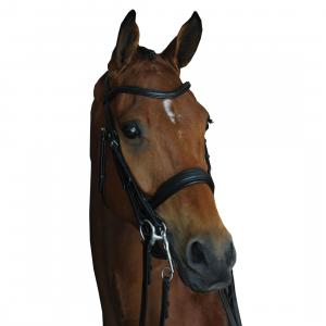 Collegiate Mono Crown Padded Raised Weymouth Bridle Black