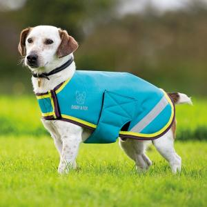 Digby & Fox Waterproof Dog Coat Aqua/Lime