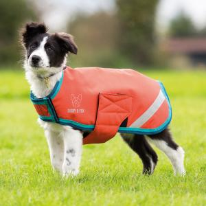 Digby & Fox Waterproof Dog Coat Orange/Aqua