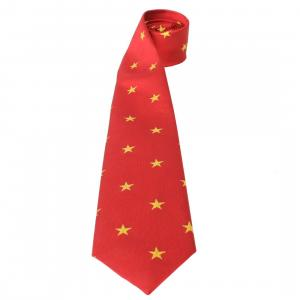 Equetech Childs Stars Show Tie Red/Gold