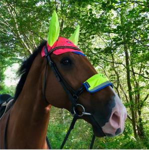 Equisafety Charlotte Dujardin Reflective Multi-Coloured Mesh Horse Ears Pink/Yellow