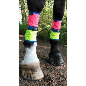 Equisafety Charlotte Dujardin Multi-Coloured Horse Boots Pink/Yellow