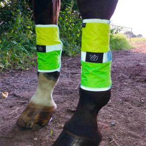 Equisafety Charlotte Dujardin Multi-Coloured Horse Boots Green/Yellow