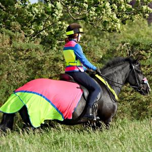 Equisafety Charlotte Dujardin Multi-Coloured Quarter Sheet Pink/Yellow