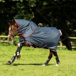 Horseware® Amigo® Bravo 12 Plus 250g Medium Weight Detach-A-Neck Turnout Rug Navy/Red/Blue