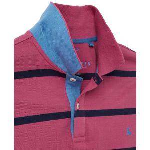 Joules Mens Filbert Polo Purple Stripe