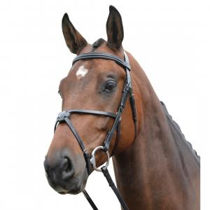 Kincade Grackle Bridle Black