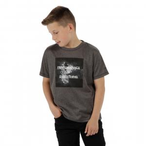 Regatta Childs Alvarado III Tee Seal Grey Marl
