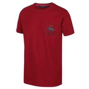 Regatta Mens Cline IV Graphic T-Shirt Spice Red