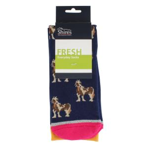 Shires Childs Everyday Socks Little Coloured