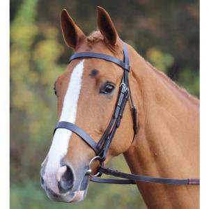 Aviemore Plain Hunt Bridle Black