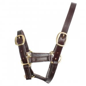 Blenheim Fully Adjustable Leather Headcollar Brown