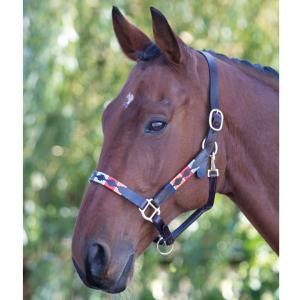 Shires Blenheim Leather Polo Headcollar Turquoise/Red/Orange/Blue