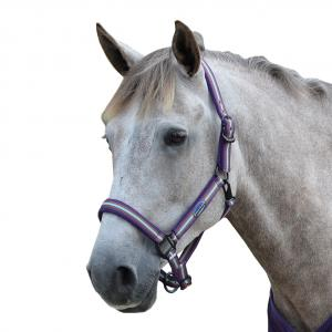 WeatherBeeta Co-Ordinate Headcollar Purple/Brown/Blue