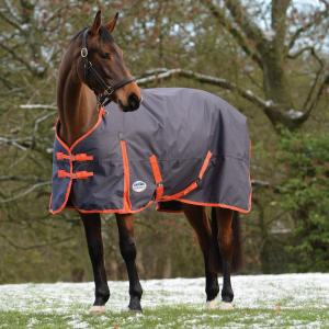 WeatherBeeta ComFiTec Essential 220g Medium Weight Standard Neck Turnout Rug Iron/Flame