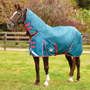 WeatherBeeta ComFiTec Plus Dynamic 100g Light-Medium Weight Combo Neck Turnout Rug Teal/Cerise/Yellow