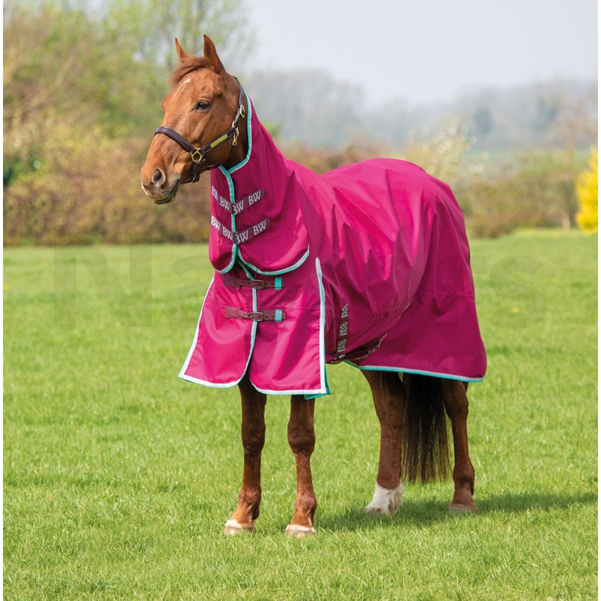 Neck Lightweight Combo Turnout Rug