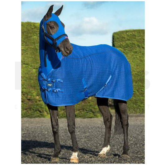 Lemieux Thermo Cool Rug Benetton Blue