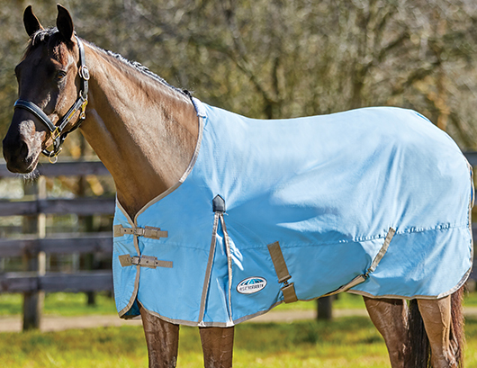 Spring Horse Rugs - Shop Now