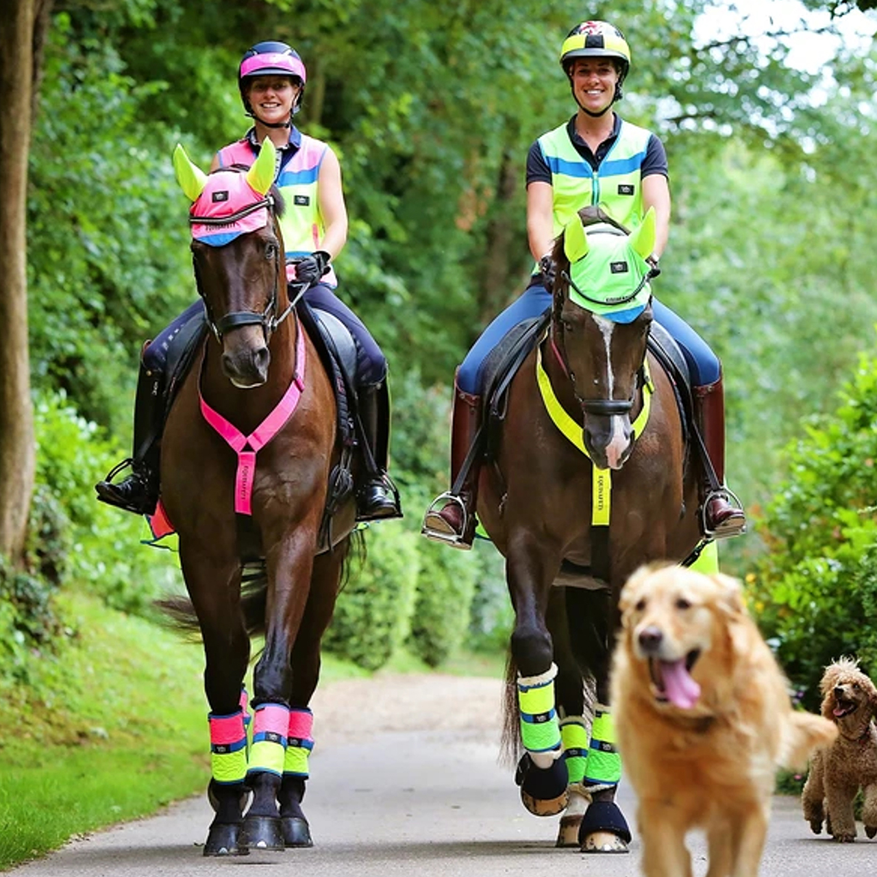 Hi-Vis For You & Your Horse – The Essentials