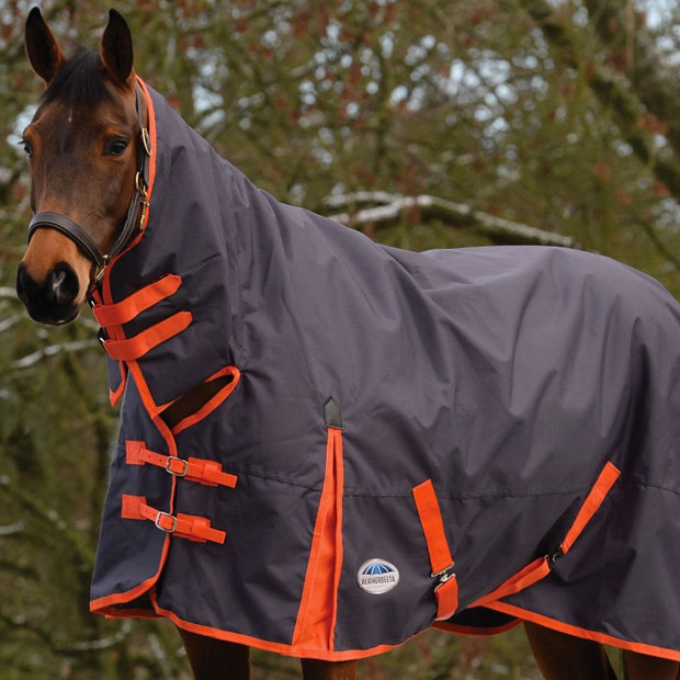 Horse Rugs Sale