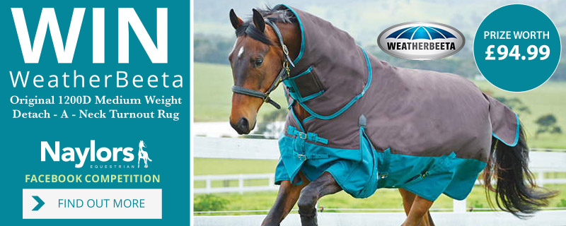 Win a Weatherbeeta Detach-A-Neck Turnout Rug in our latest competition