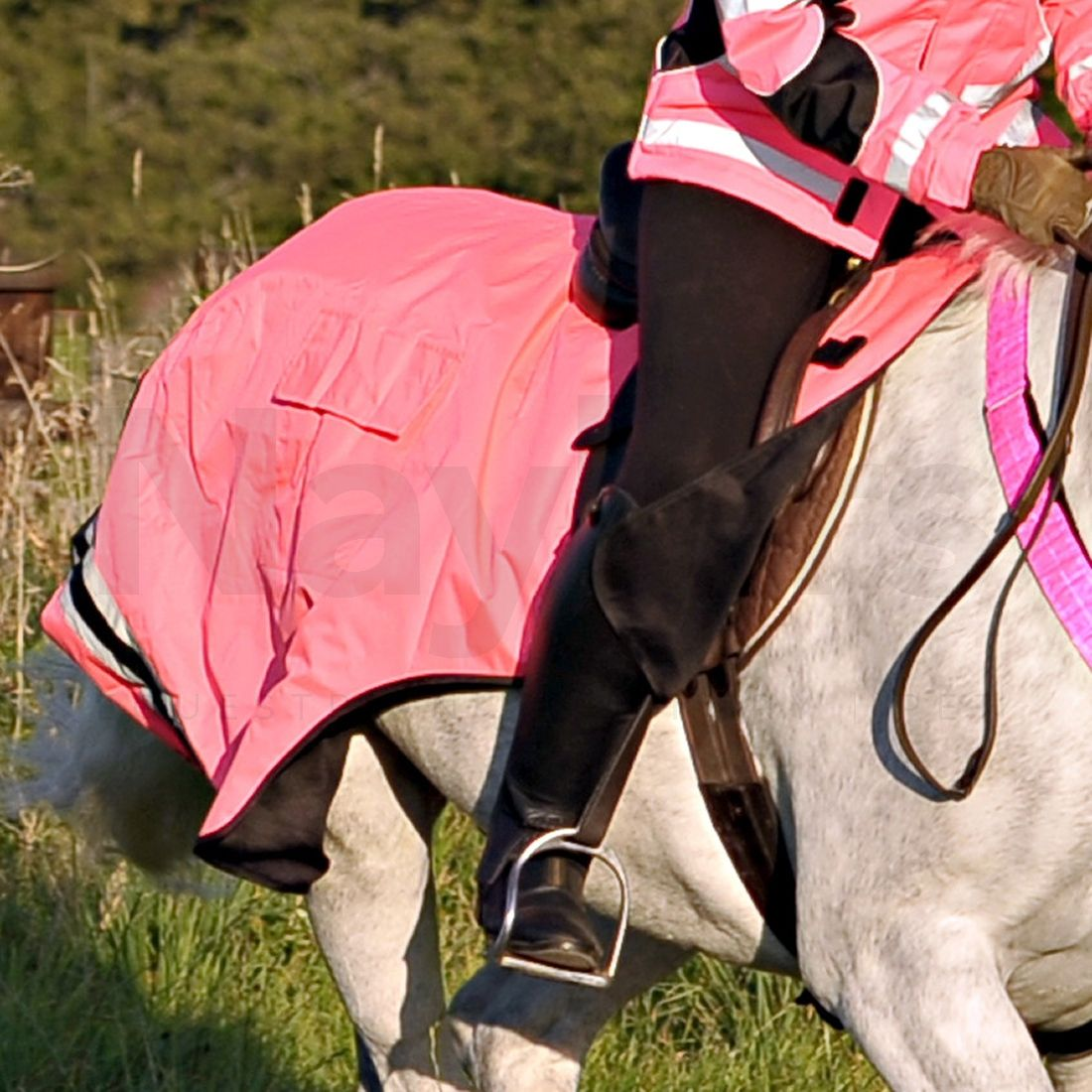 Other Horse Wear EQUISAFETY WRAP AROUND